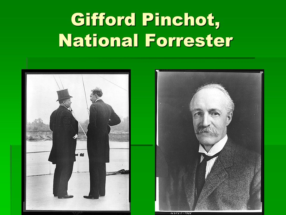 Gifford Pinchot, National Forrester