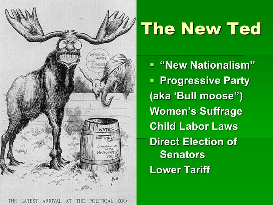 The New Ted New Nationalism Progressive Party (aka 'Bull moose )