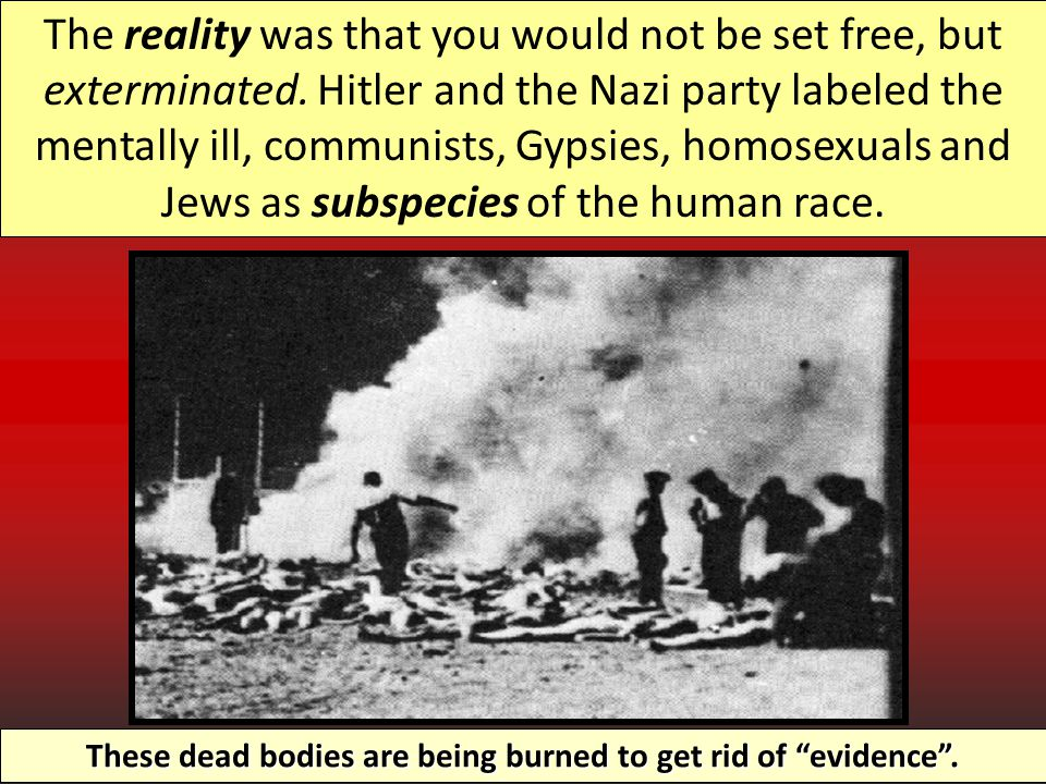 These dead bodies are being burned to get rid of evidence .