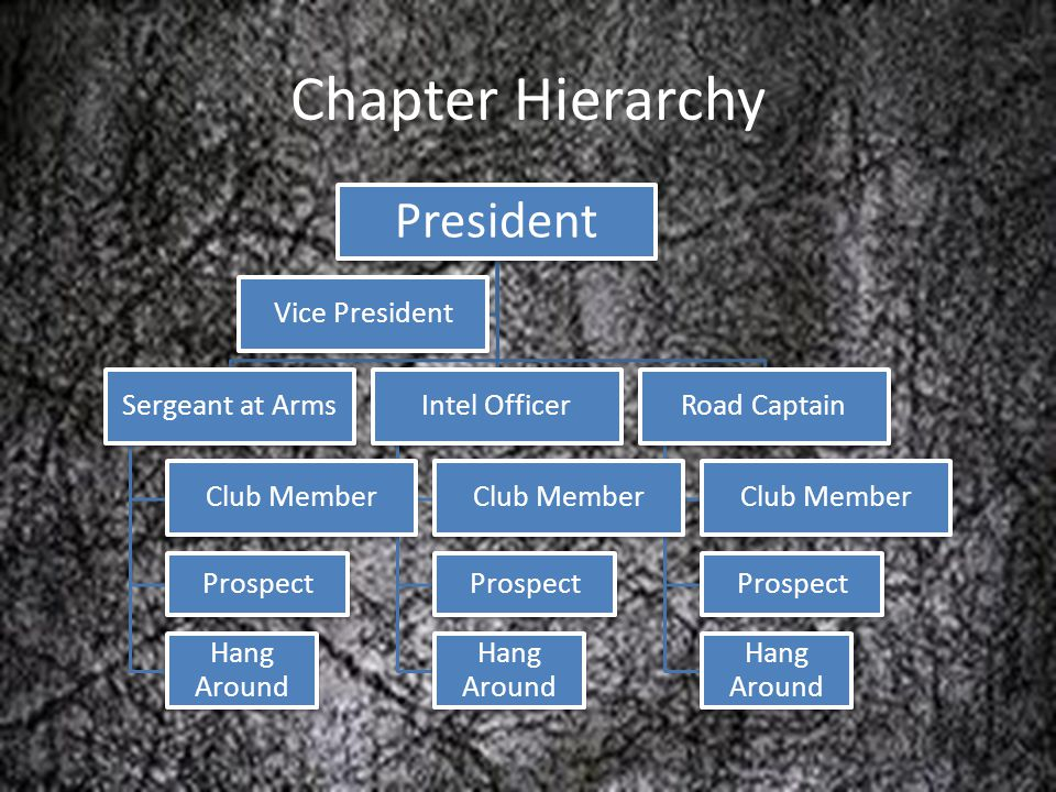 Chapter Hierarchy President Sergeant at Arms Club Member Prospect