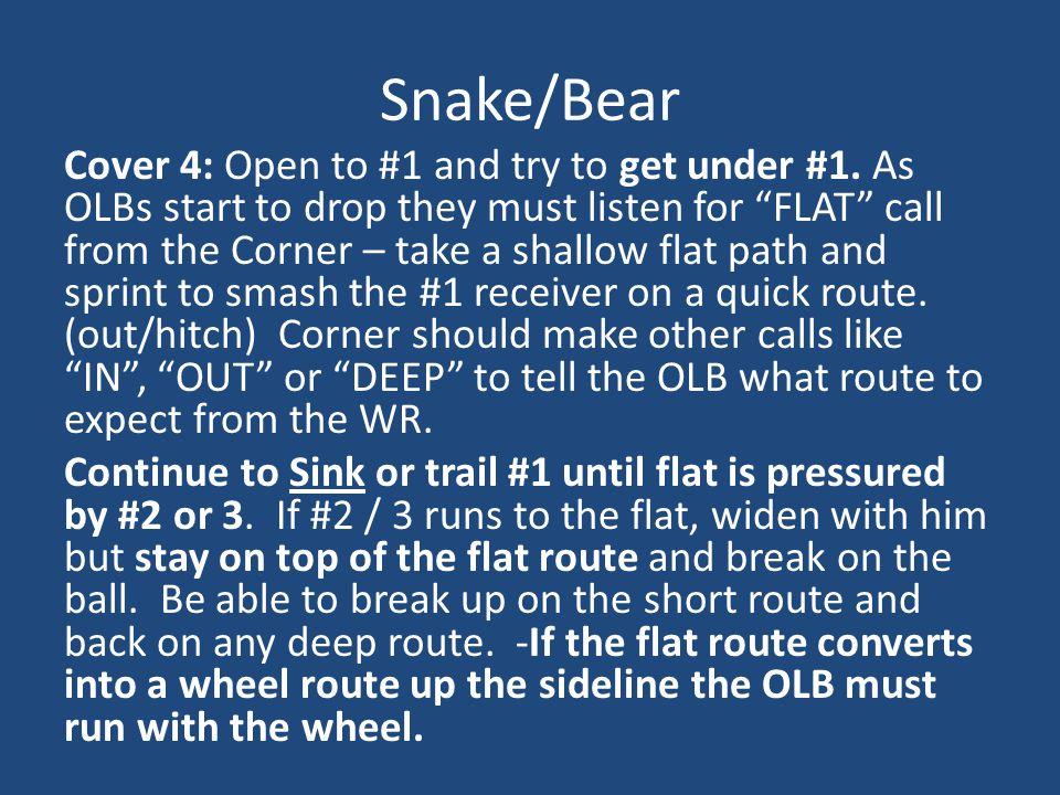 Snake/Bear