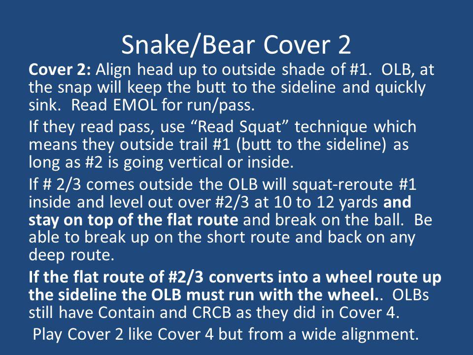 Snake/Bear Cover 2