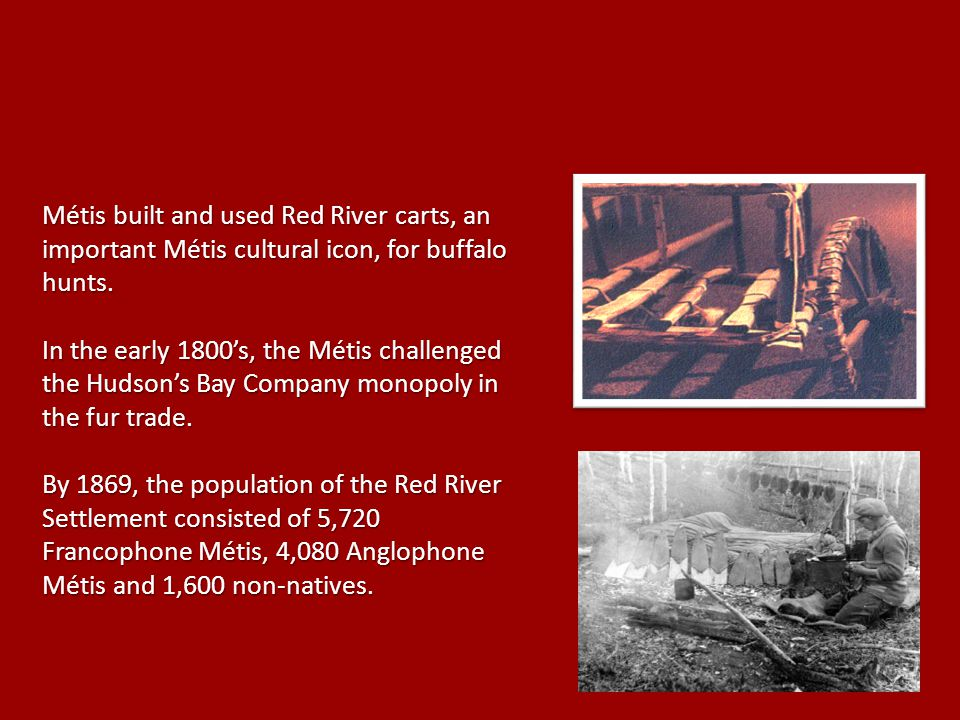 Métis built and used Red River carts, an important Métis cultural icon, for buffalo hunts.