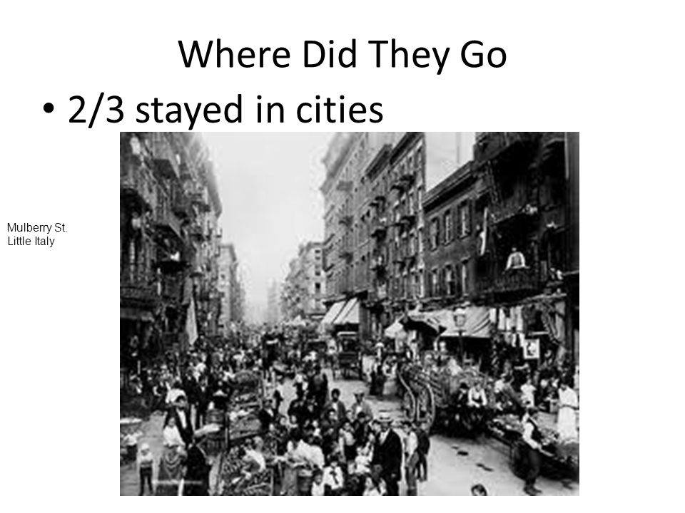 Where Did They Go 2/3 stayed in cities Mulberry St. Little Italy