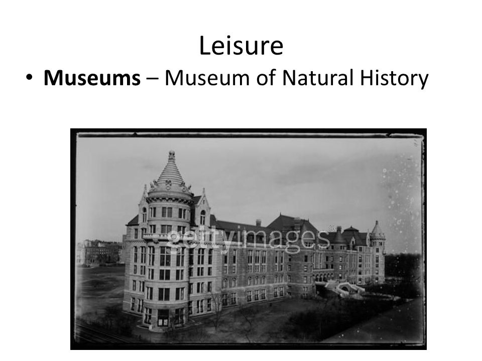 Leisure Museums – Museum of Natural History