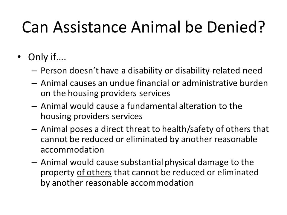 Can Assistance Animal be Denied
