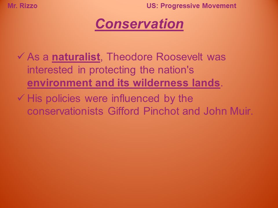 Conservation As a naturalist, Theodore Roosevelt was interested in protecting the nation s environment and its wilderness lands.