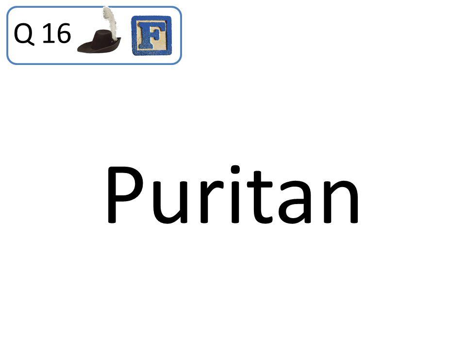 Q 16 Puritan