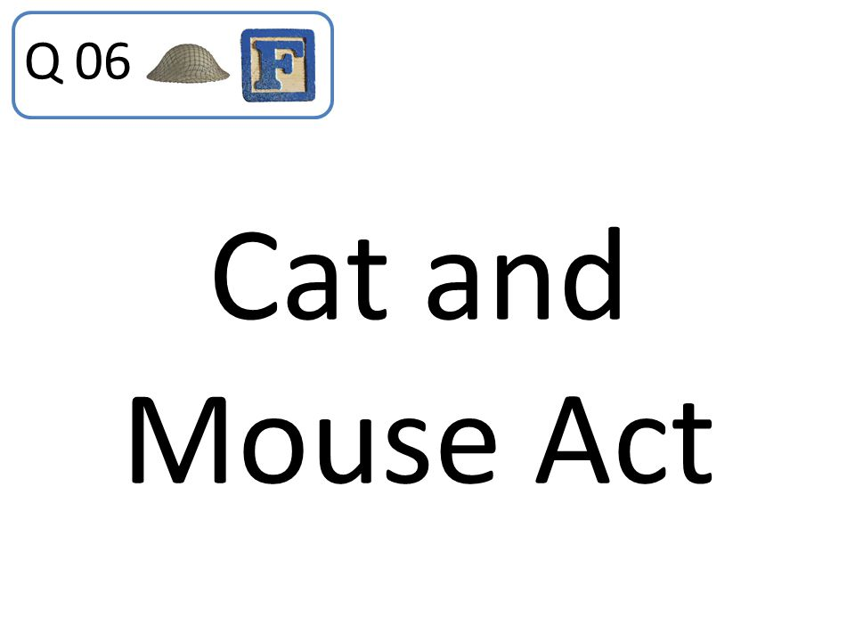Q 06 Cat and Mouse Act
