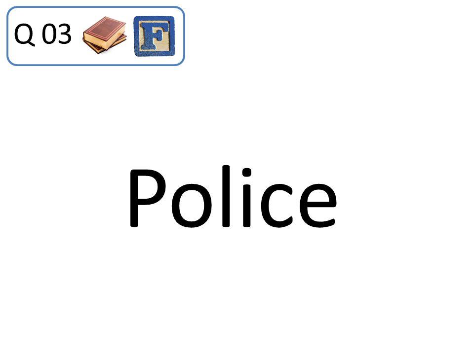 Q 03 Police