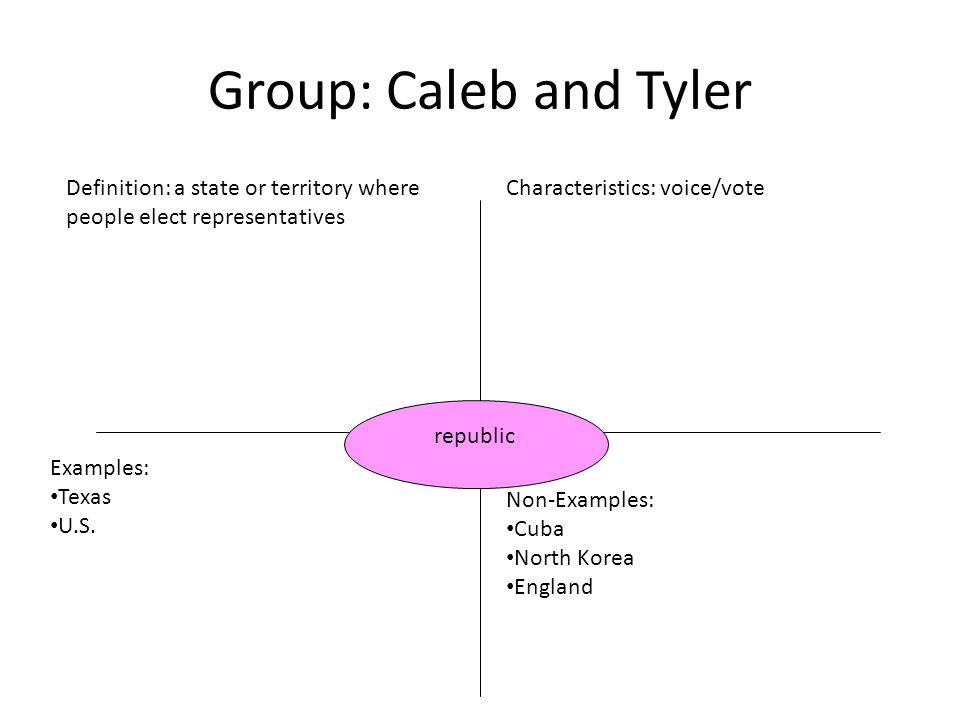 Group: Caleb and Tyler Definition: a state or territory where people elect representatives. Characteristics: voice/vote.