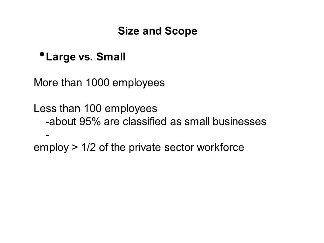 Size and Scope Large vs. Small. More than 1000 employees. Less than 100 employees. -about 95% are classified as small businesses.