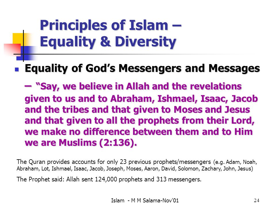 principles of diversity equality and i Diversity and equality are closely related and important terms despite the potential advantages and general acceptance of the principles of equality and.