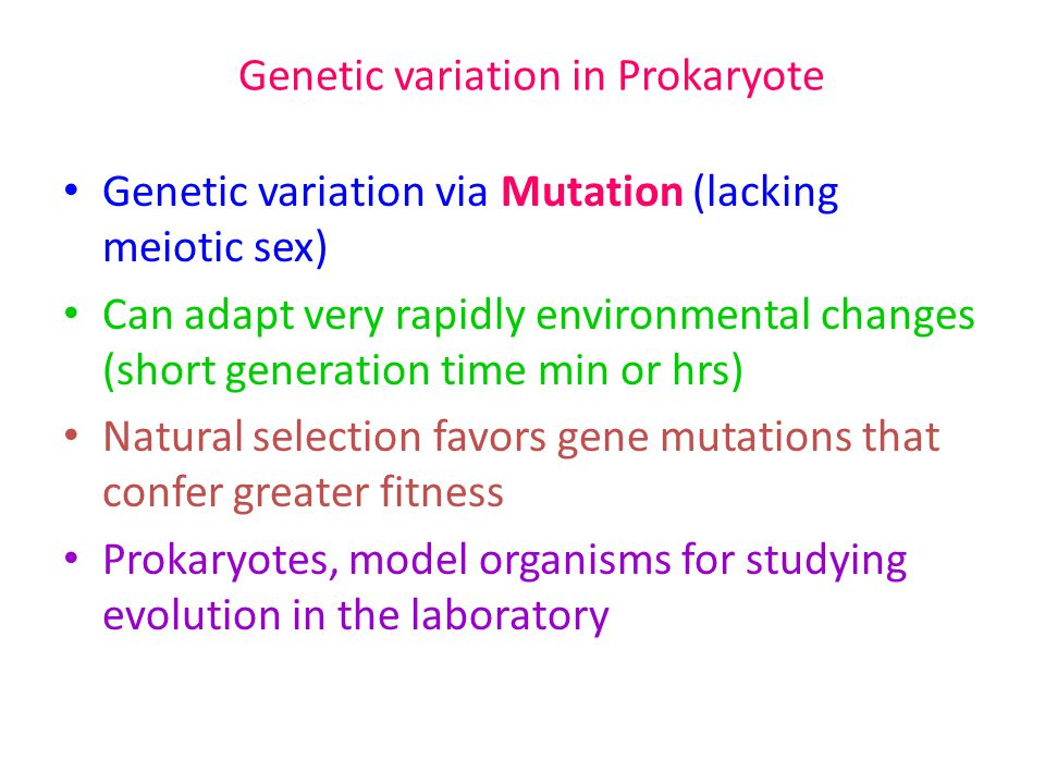 Genetic variation in Prokaryote