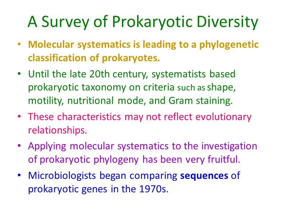 A Survey of Prokaryotic Diversity