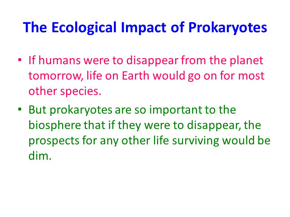 The Ecological Impact of Prokaryotes