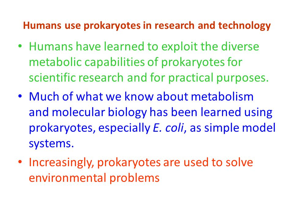 Humans use prokaryotes in research and technology