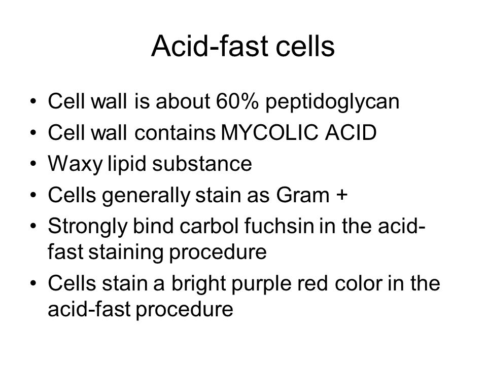 Acid-fast cells Cell wall is about 60% peptidoglycan