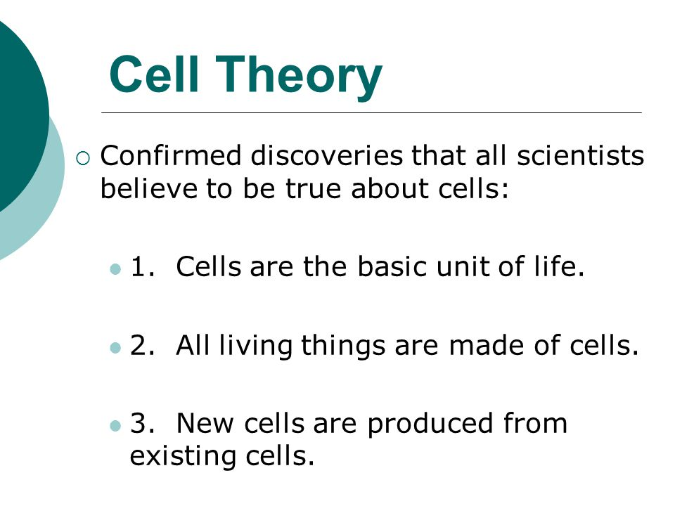 Cell Theory Confirmed discoveries that all scientists believe to be true about cells: 1. Cells are the basic unit of life.
