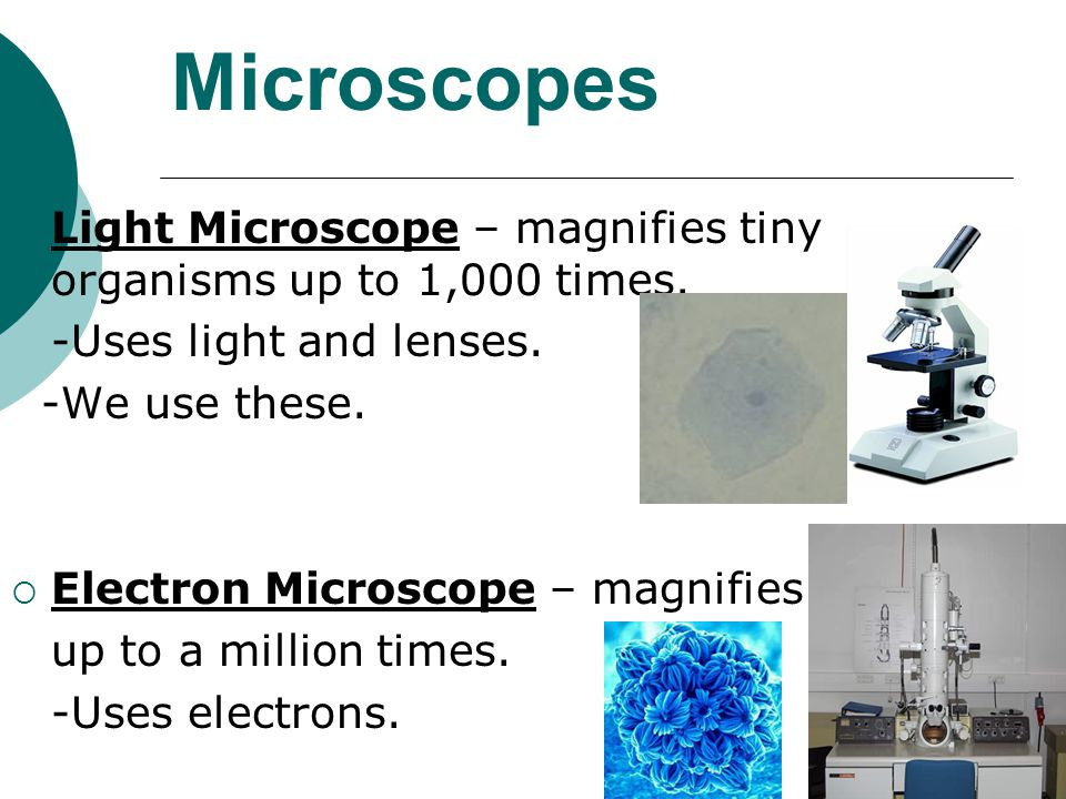 Microscopes Light Microscope – magnifies tiny organisms up to 1,000 times. -Uses light and lenses.