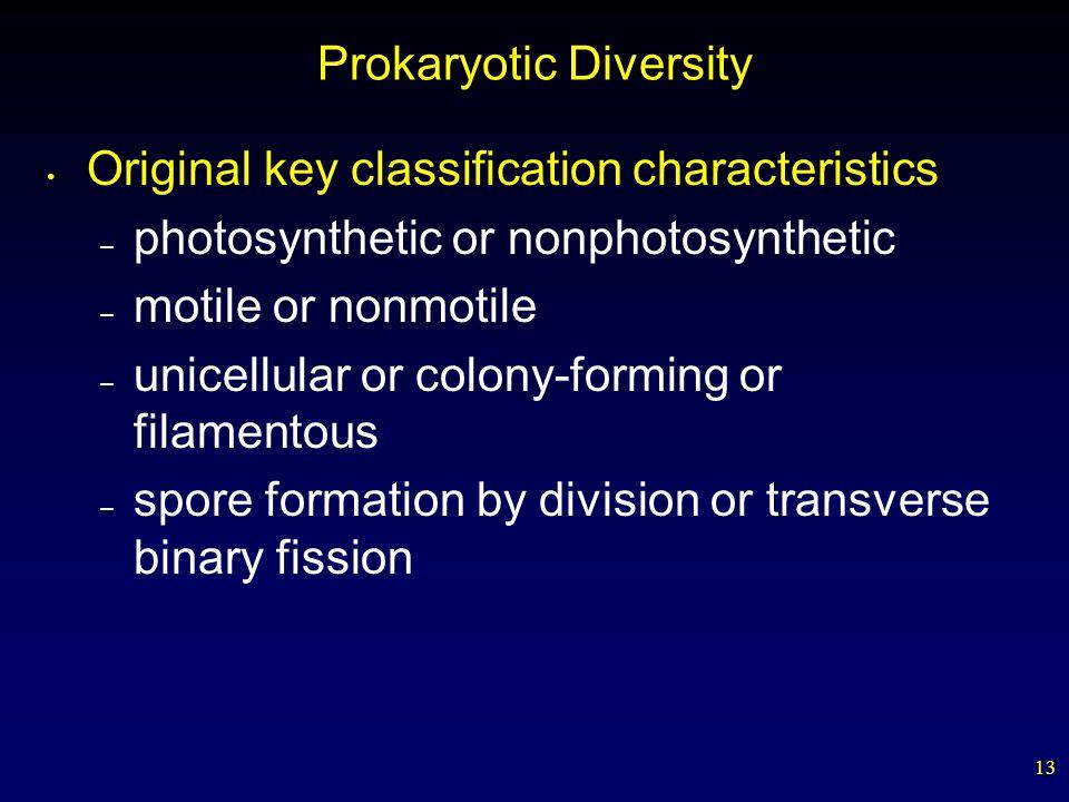 Prokaryotic Diversity