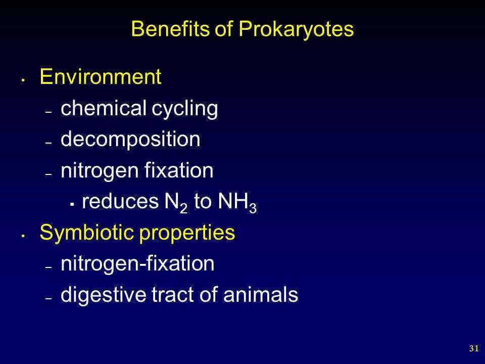 Benefits of Prokaryotes