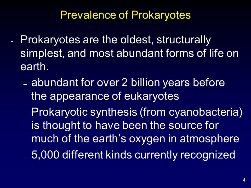 Prevalence of Prokaryotes