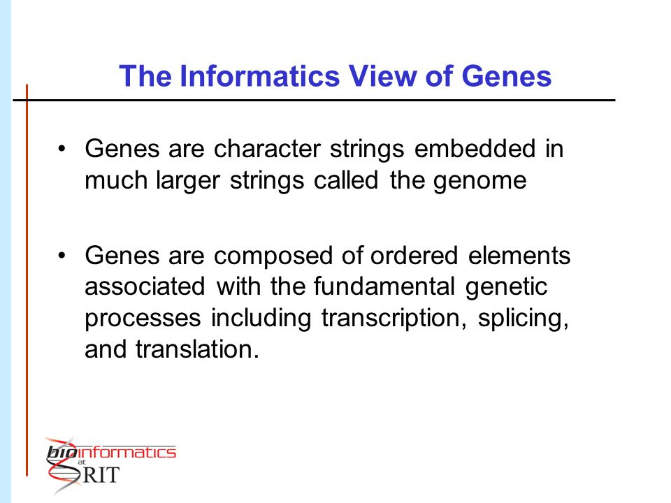 The Informatics View of Genes