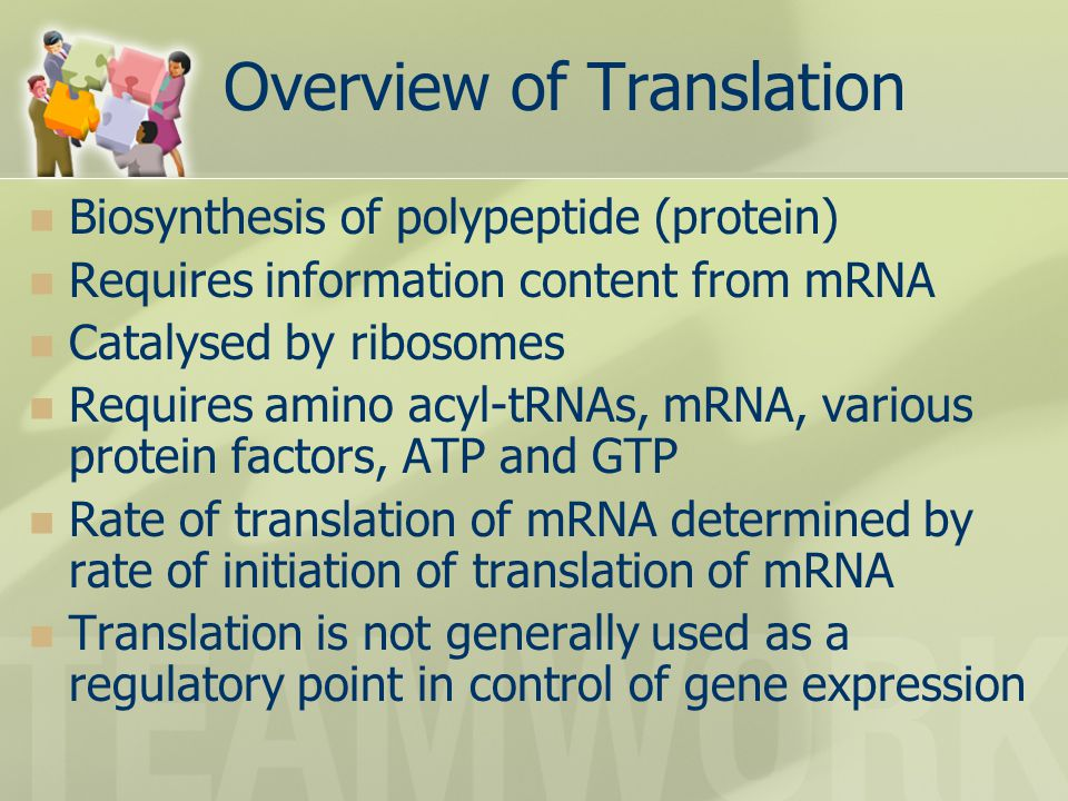 Overview of Translation