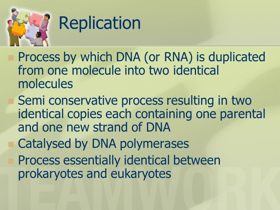 Replication Process by which DNA (or RNA) is duplicated from one molecule into two identical molecules.