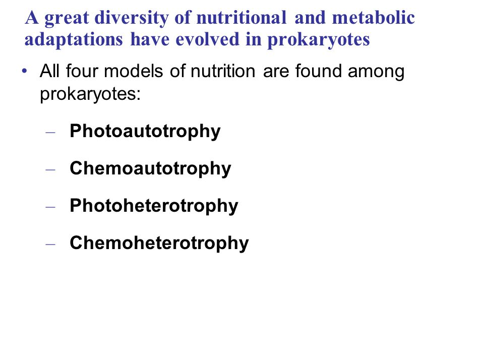 A great diversity of nutritional and metabolic adaptations have evolved in prokaryotes