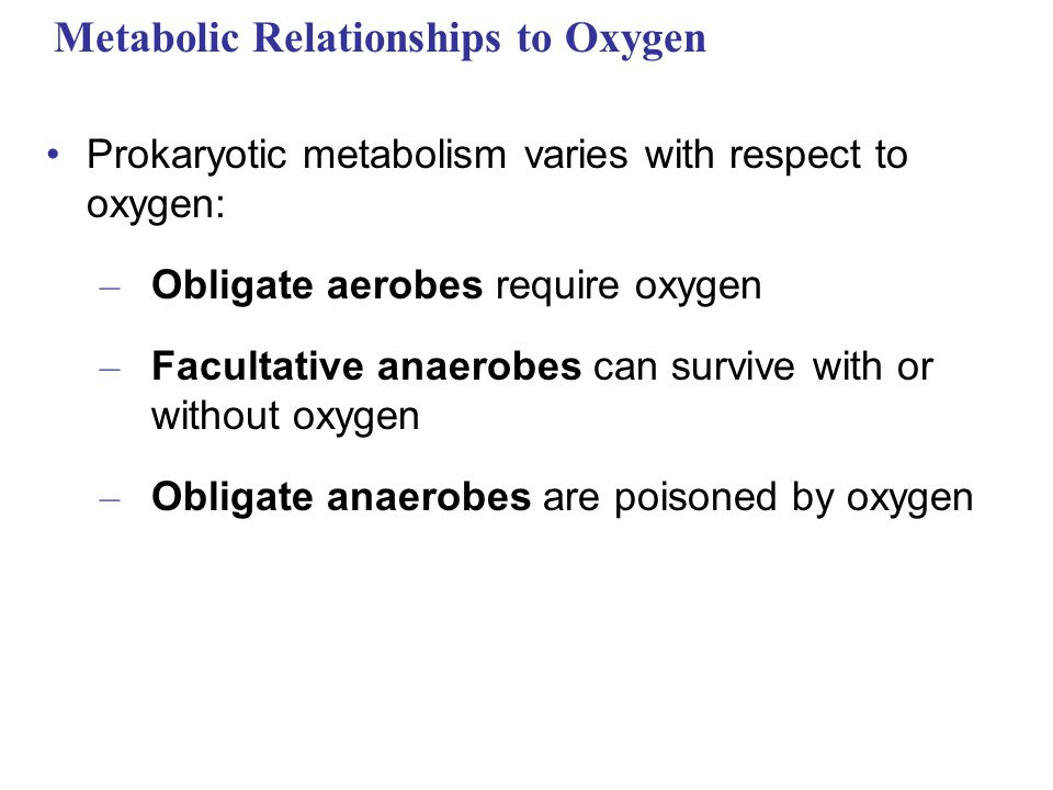 Metabolic Relationships to Oxygen
