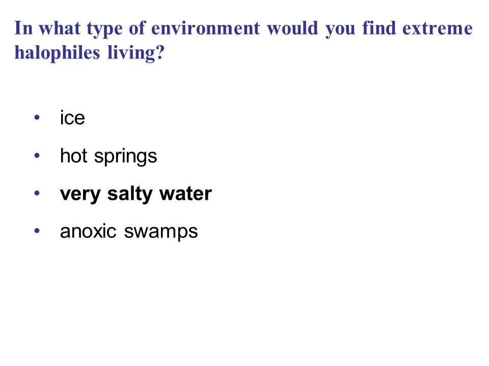 In what type of environment would you find extreme halophiles living