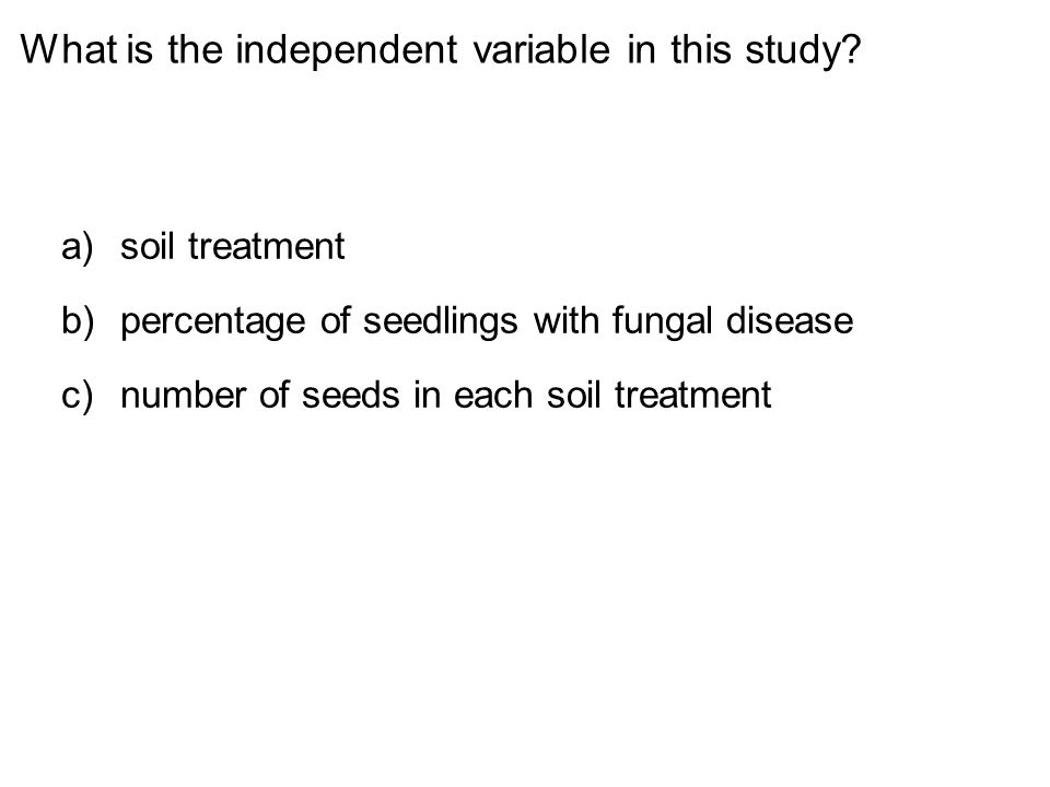 What is the independent variable in this study