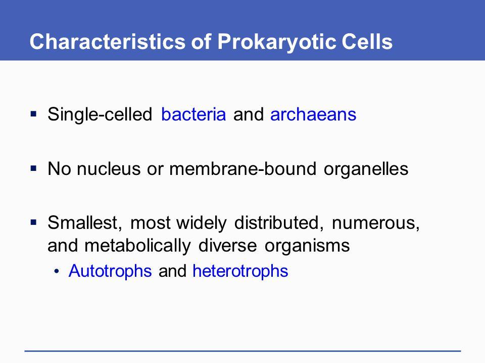 Characteristics of Prokaryotic Cells
