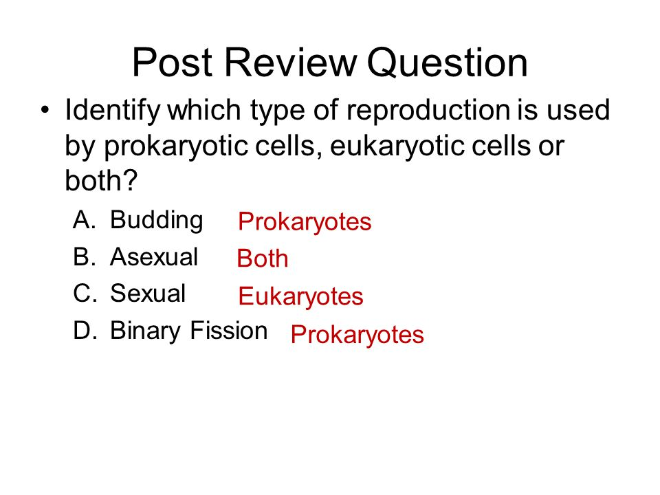 Post Review Question Identify which type of reproduction is used by prokaryotic cells, eukaryotic cells or both