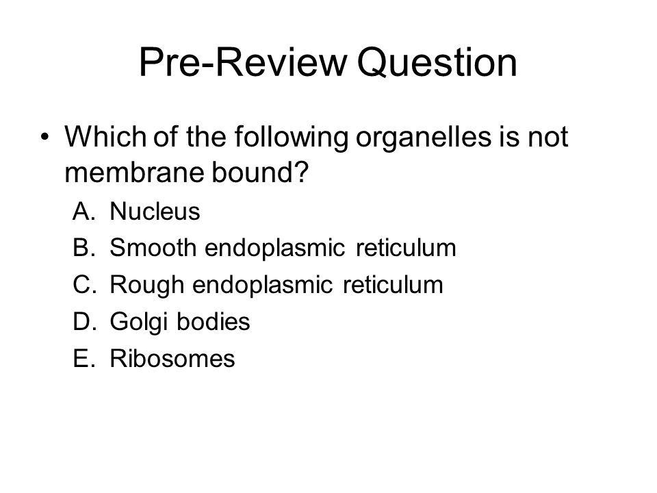 Pre-Review Question Which of the following organelles is not membrane bound Nucleus. Smooth endoplasmic reticulum.