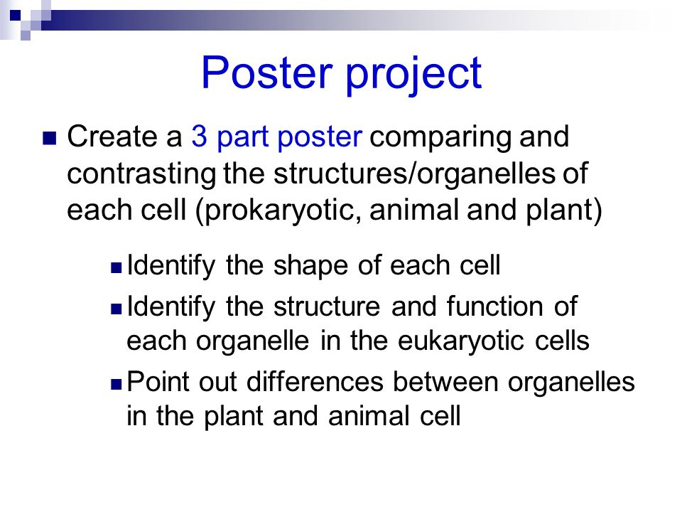 Poster project Create a 3 part poster comparing and contrasting the structures/organelles of each cell (prokaryotic, animal and plant)