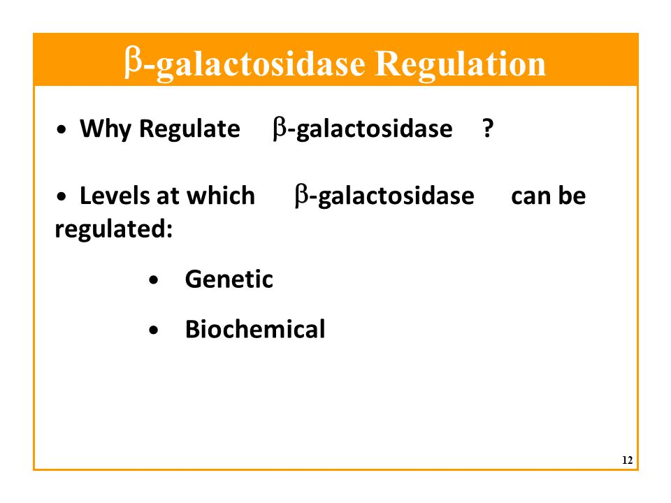 b - galactosidase Regulation • Why Regulate b - galactosidase •