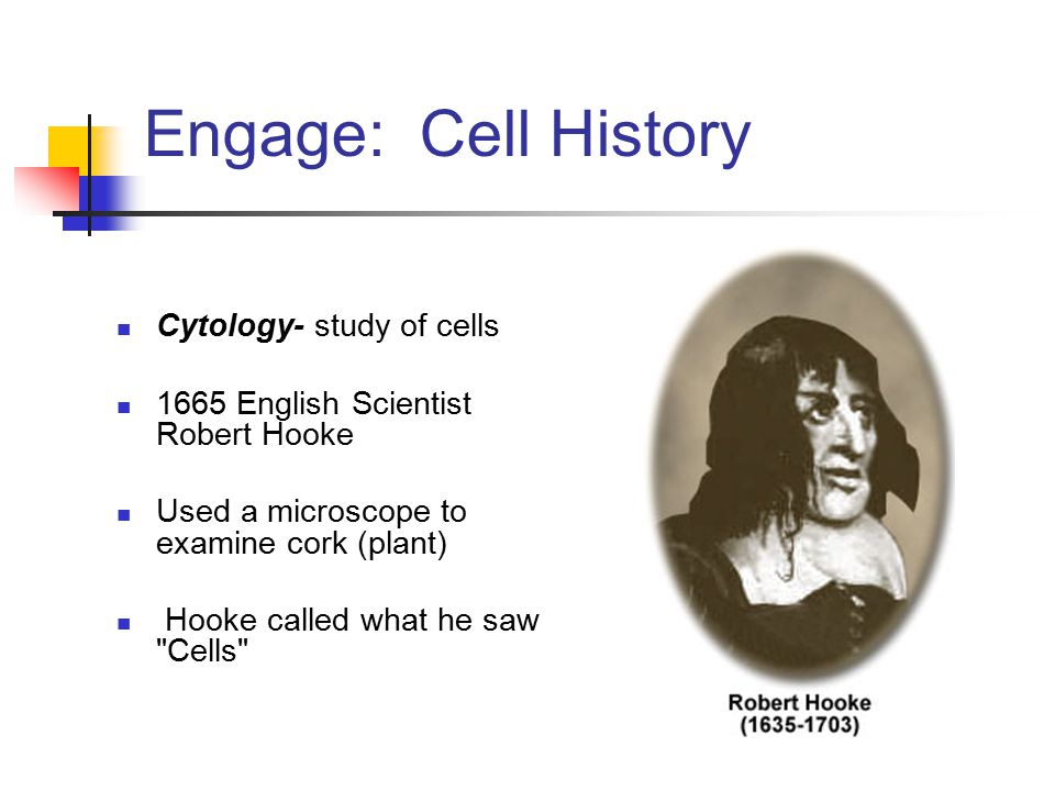 Engage: Cell History Cytology- study of cells