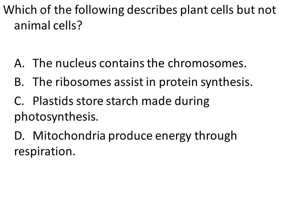 Which of the following describes plant cells but not animal cells. A