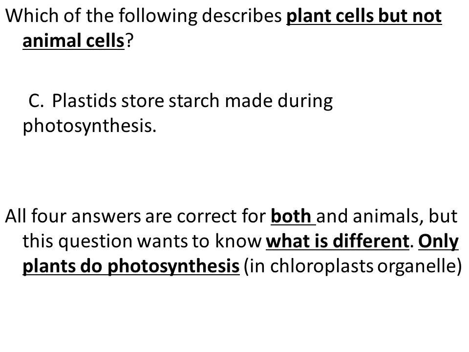 Which of the following describes plant cells but not animal cells. C