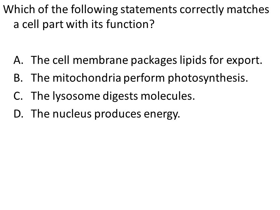 Which of the following statements correctly matches a cell part with its function