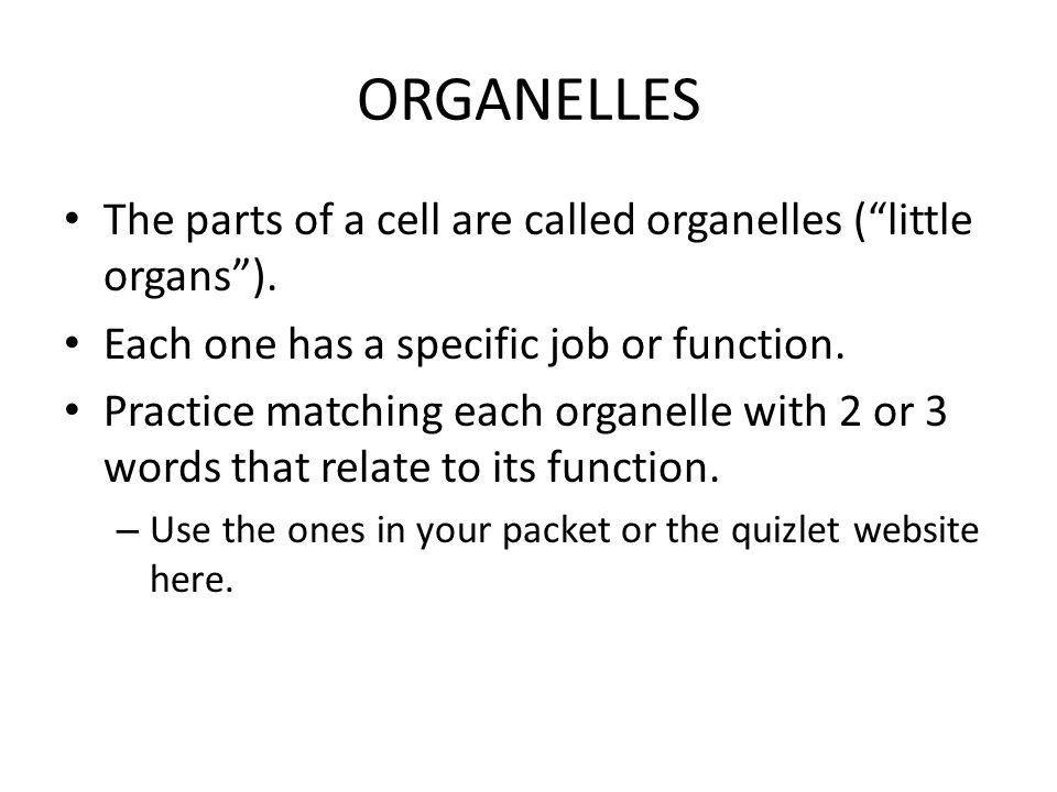 ORGANELLES The parts of a cell are called organelles ( little organs ). Each one has a specific job or function.