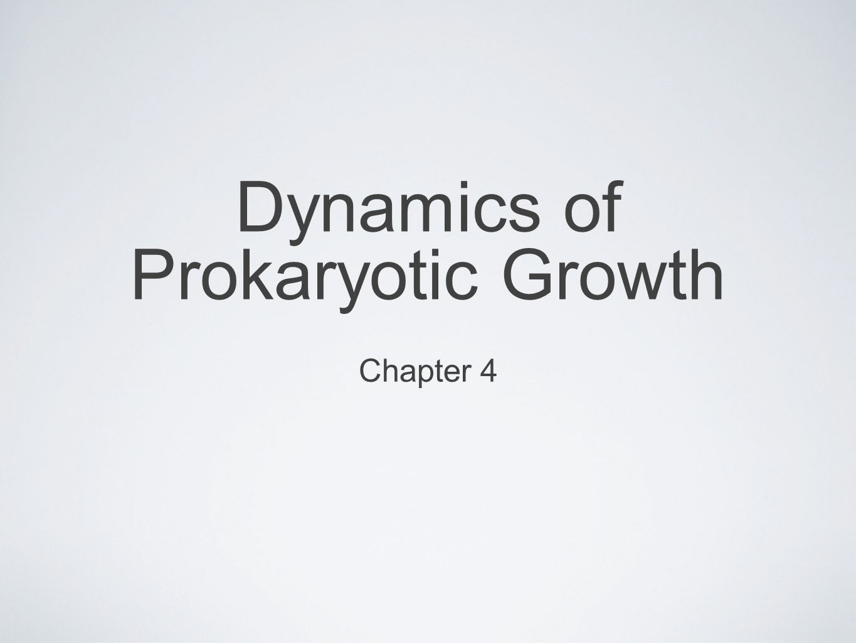 Dynamics of Prokaryotic Growth