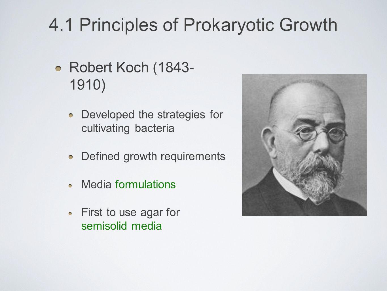 4.1 Principles of Prokaryotic Growth