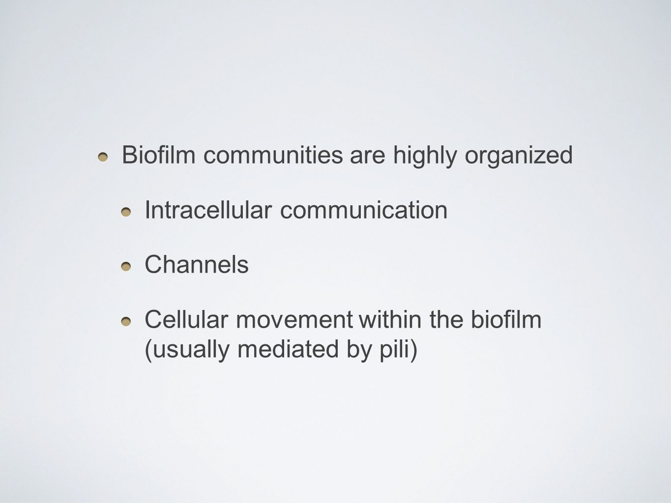 Biofilm communities are highly organized