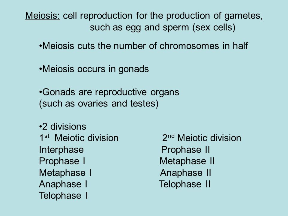 Meiosis: cell reproduction for the production of gametes, such as egg and sperm (sex cells)