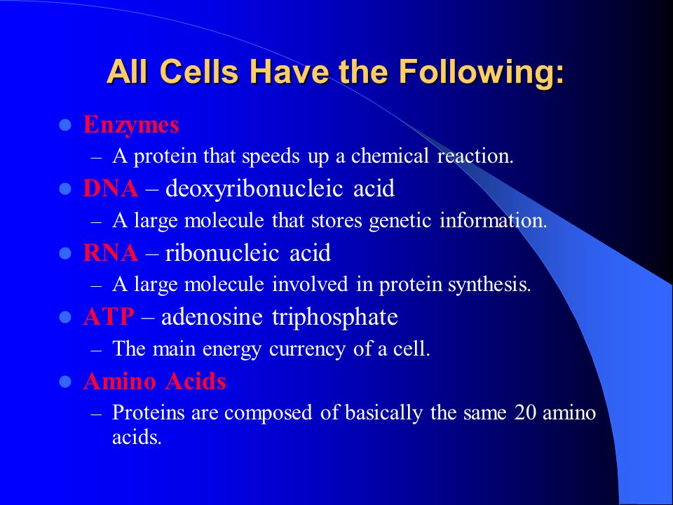 All Cells Have the Following: