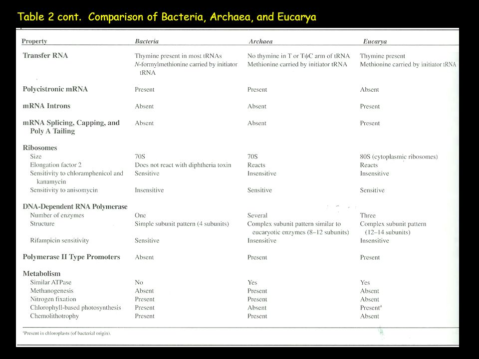Table 2 cont. Comparison of Bacteria, Archaea, and Eucarya